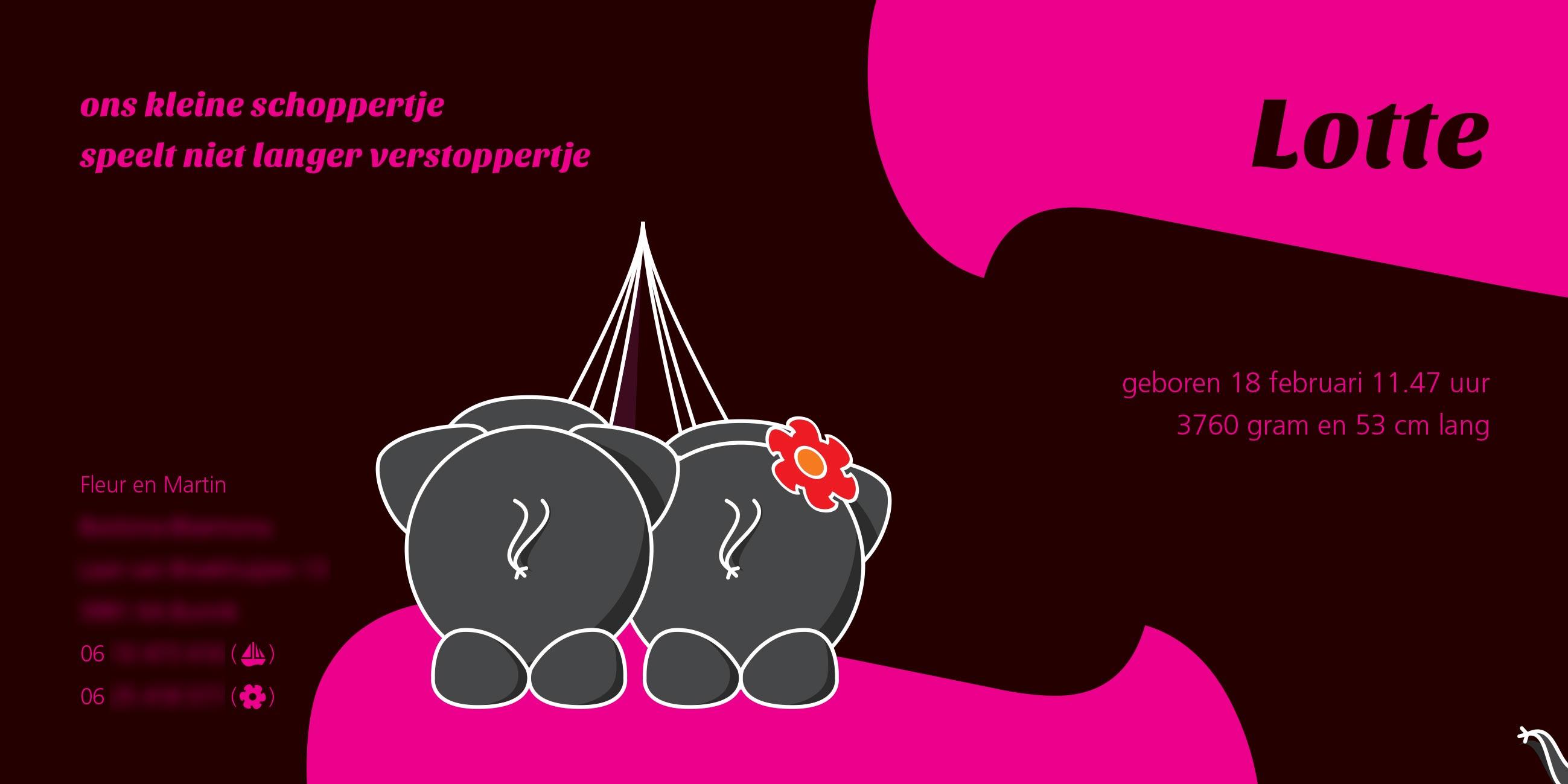 geboortekaartje Lotte uniek persoonlijk ontwerp